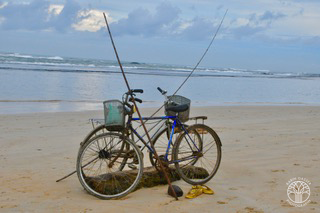 Sri Lanka, Alutgama (0010)