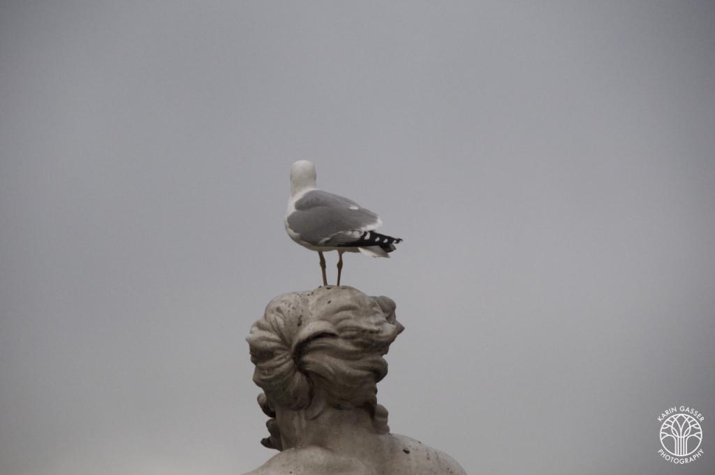 Wien Schönbrunn (0125)