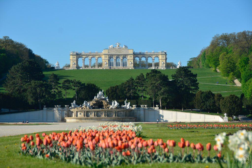 Gloriette Schönbrunn (713796)